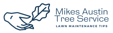 Mikes Austin Tree Service